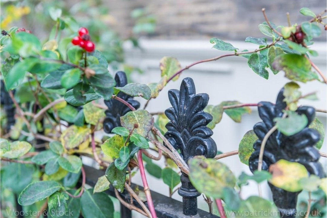 House - Terraced For Sale in Sutherland Square, SE17 197 view28