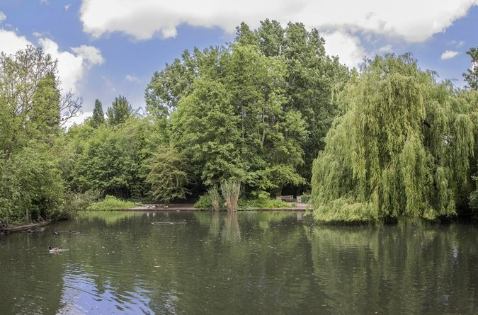 Area Guide Nunhead Parks & Green Spaces Peckham Rye Park